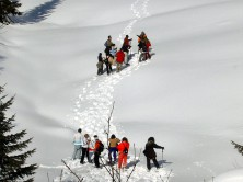 Teambuilding activities - The snowshoe trekking
